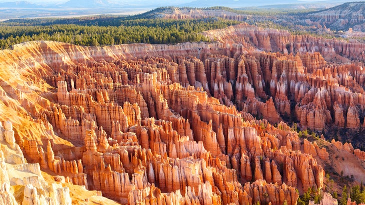 Hoodoos in Bryce Canyon and Zion National Parks